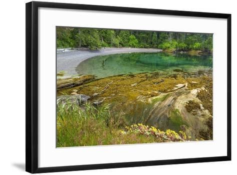 Washington State, San Juan Islands. Secluded Bay on Sucia Island-Don Paulson-Framed Art Print