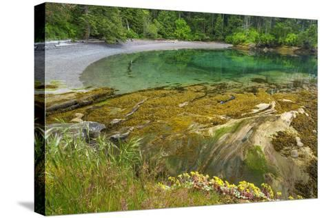 Washington State, San Juan Islands. Secluded Bay on Sucia Island-Don Paulson-Stretched Canvas Print