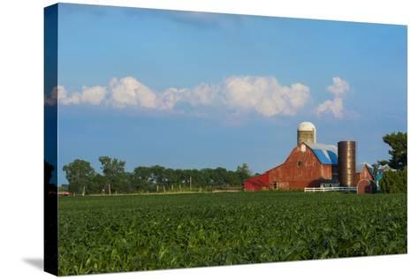 Farm with Red Barn and Corn, Milford Center, Ohio-Bill Bachmann-Stretched Canvas Print