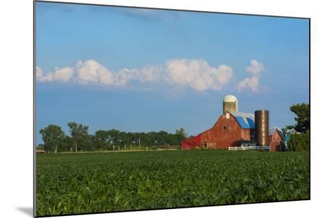 Farm with Red Barn and Corn, Milford Center, Ohio-Bill Bachmann-Mounted Photographic Print