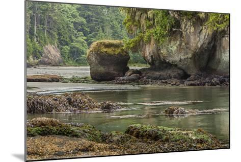 Crescent Beach Bay and Island, Low Tide, Olympic Peninsula, Washington-Michael Qualls-Mounted Photographic Print