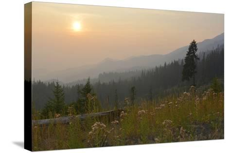 Washington, Wenatchee NF, Overlook with Smoky Sky from Wild Fires-Savanah Stewart-Stretched Canvas Print