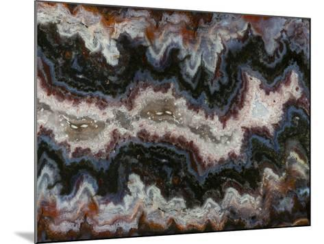 Agate in Colorful Design, Sammamish, WA-Darrell Gulin-Mounted Photographic Print