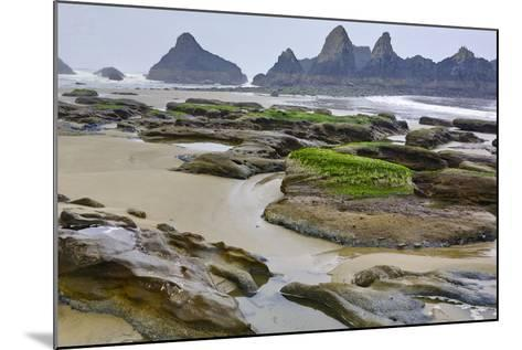 USA, Oregon, Seal Rock State Park. Rocky Beach at Low Tide-Jean Carter-Mounted Photographic Print