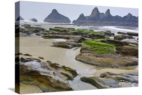 USA, Oregon, Seal Rock State Park. Rocky Beach at Low Tide-Jean Carter-Stretched Canvas Print