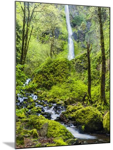 Oregon, Wahkeena Falls. Located Along I-84, the Columbia River Gorge-Richard Duval-Mounted Photographic Print