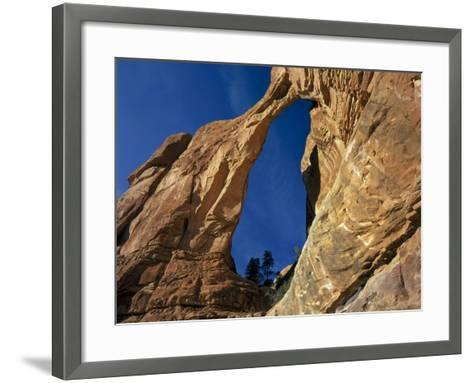 Utah. Angel Arch in Arch Canyon. Manti-Lasal NF. Great Canyonlands-Scott T^ Smith-Framed Art Print