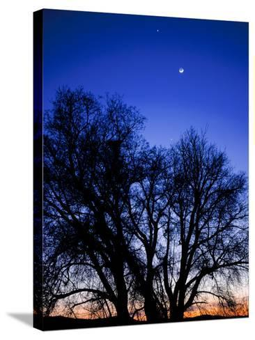 Utah. Venus, the Moon, and Jupiter in a Compact Grouping in the Sky-Scott T^ Smith-Stretched Canvas Print