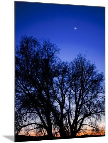 Utah. Venus, the Moon, and Jupiter in a Compact Grouping in the Sky-Scott T^ Smith-Mounted Photographic Print