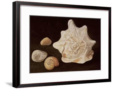 Conch Shell, 1995-Peter Davidson-Framed Art Print
