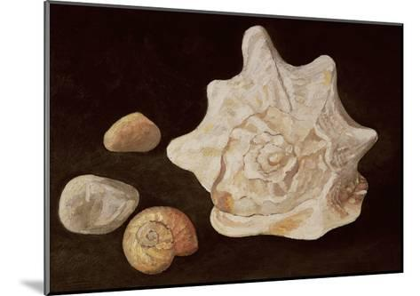 Conch Shell, 1995-Peter Davidson-Mounted Giclee Print