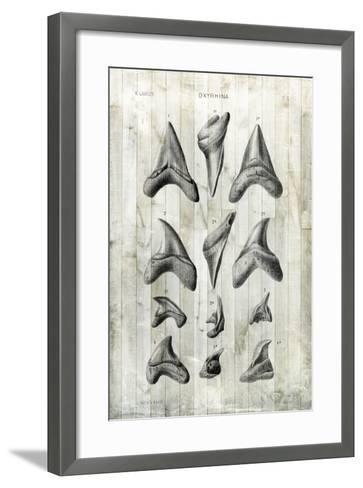 Relic Hunter II-Vision Studio-Framed Art Print