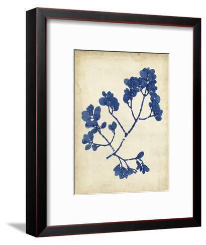 Indigo Leaf Study III-Vision Studio-Framed Art Print