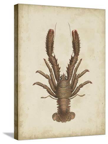 Crustaceans III-James Sowerby-Stretched Canvas Print