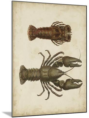 Crustaceans V-James Sowerby-Mounted Art Print
