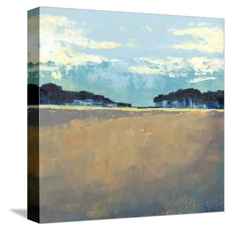 Aureate Seascape I-Grace Popp-Stretched Canvas Print