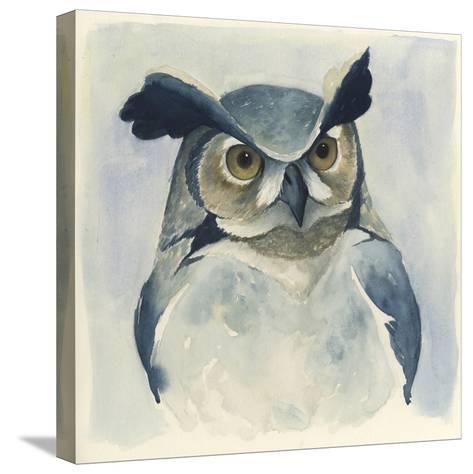 Midnight Aves I-Grace Popp-Stretched Canvas Print