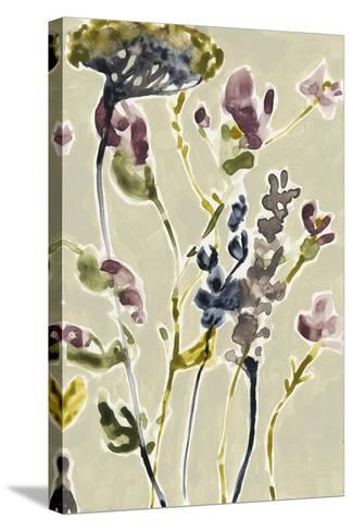 Parchment Flower Field II-Jennifer Goldberger-Stretched Canvas Print