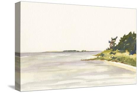 Solitary Coastline I-Dianne Miller-Stretched Canvas Print