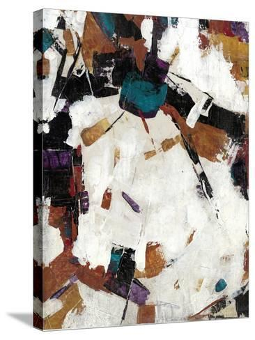Puzzle III-Tim OToole-Stretched Canvas Print