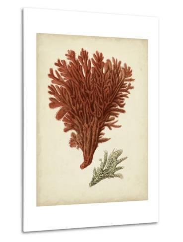 Antique Red Coral V-Vision Studio-Metal Print