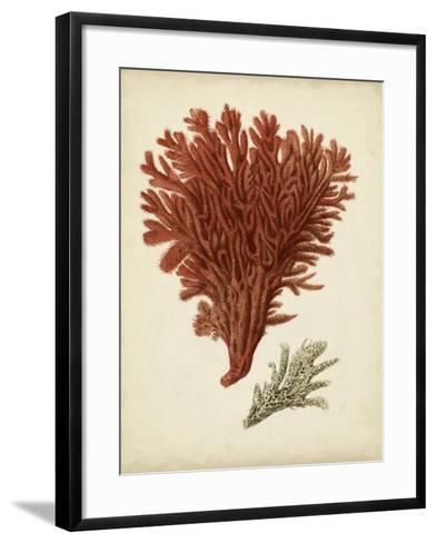 Antique Red Coral V-Vision Studio-Framed Art Print