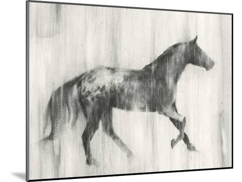 Appaloosa Study I-Ethan Harper-Mounted Art Print