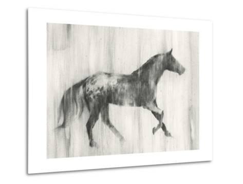 Appaloosa Study I-Ethan Harper-Metal Print