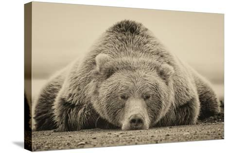 Deep Sleep-PHBurchett-Stretched Canvas Print