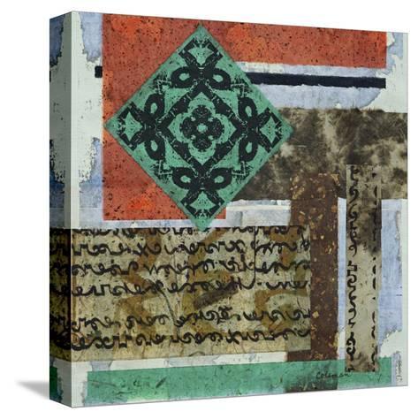 Terra Assemblage II-Heidi Coleman-Stretched Canvas Print