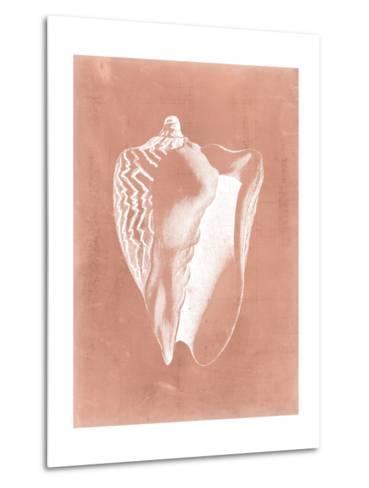 Sealife on Coral I-Vision Studio-Metal Print