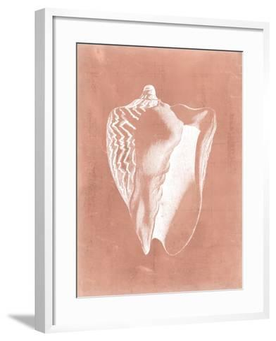 Sealife on Coral I-Vision Studio-Framed Art Print