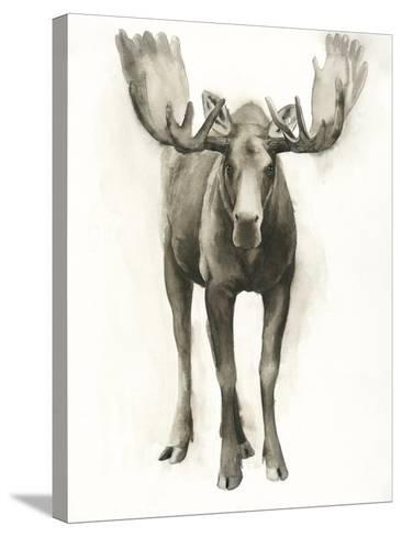 Majestic Wildlife I-Grace Popp-Stretched Canvas Print