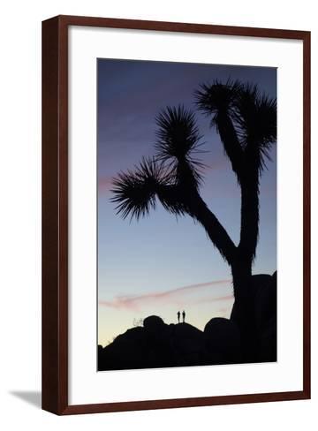Late Rays of Light at Sunset in Joshua Tree National Park, California-Bill Hatcher-Framed Art Print