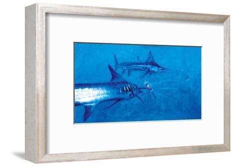 Two Striped Marlin and Three Pelagia Jellyfish, 2004-Stanley Meltzoff-Framed Art Print