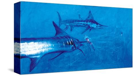 Two Striped Marlin and Three Pelagia Jellyfish, 2004-Stanley Meltzoff-Stretched Canvas Print