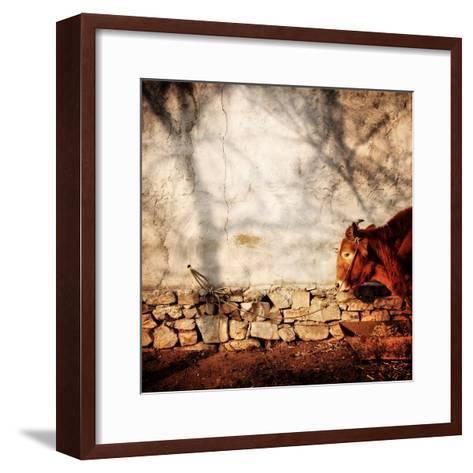 A Cow Tied Up Outside a Small Farmhouse in Rural China-Sean Gallagher-Framed Art Print