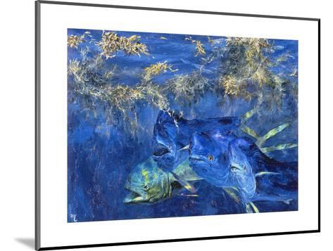 Dolphin Cruising the Weed Line, 1985-Stanley Meltzoff-Mounted Giclee Print