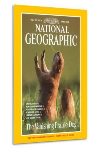 Cover of the April, 1998 National Geographic Magazine-Raymond Gehman-Metal Print