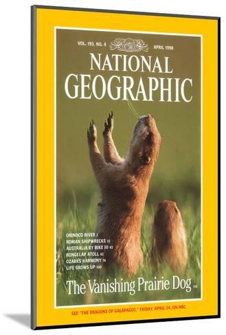 Cover of the April, 1998 National Geographic Magazine-Raymond Gehman-Mounted Photographic Print