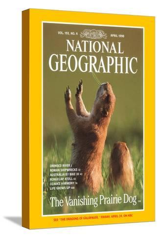 Cover of the April, 1998 National Geographic Magazine-Raymond Gehman-Stretched Canvas Print