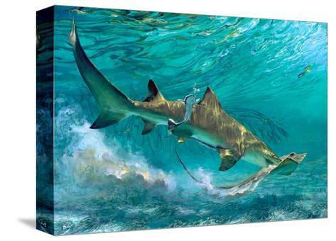 Lemon Shark and Ray, 1992-Stanley Meltzoff-Stretched Canvas Print