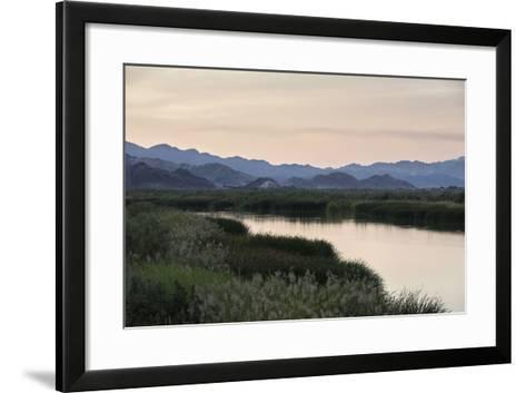 Rio Hardy, a River Tributary in the Colorado River Delta-Bill Hatcher-Framed Art Print