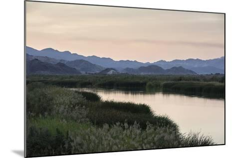 Rio Hardy, a River Tributary in the Colorado River Delta-Bill Hatcher-Mounted Photographic Print