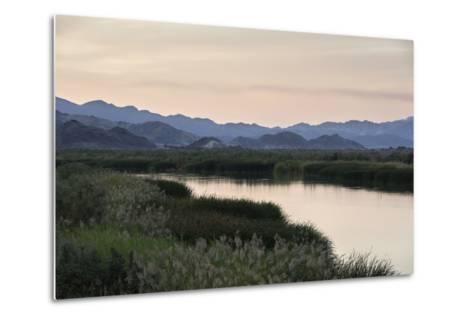 Rio Hardy, a River Tributary in the Colorado River Delta-Bill Hatcher-Metal Print