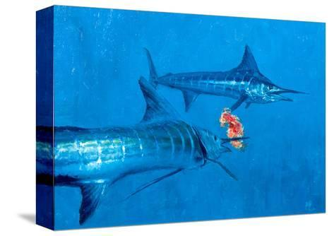 Two Striped Marlin and Iris Nudibranch-Stanley Meltzoff-Stretched Canvas Print