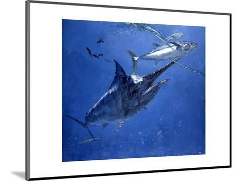 Black Marlin, Two Dogtooth Tuna and Needlefish-Stanley Meltzoff-Mounted Giclee Print