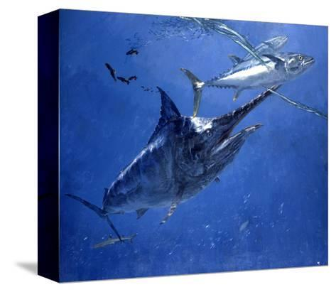 Black Marlin, Two Dogtooth Tuna and Needlefish-Stanley Meltzoff-Stretched Canvas Print