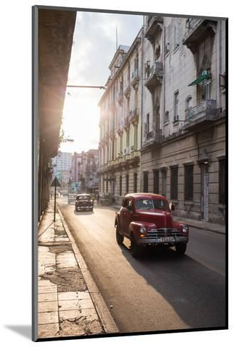 Vintage Cars Drive Down a Street in Havana-Erika Skogg-Mounted Photographic Print