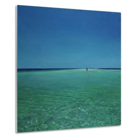 The Bonefisherman: a Distant Flats Fisherman Casts His Fly for Bonefish-Stanley Meltzoff-Metal Print